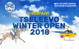 Tseleevo Winter Open